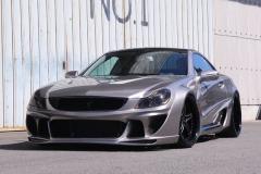 R230 Platinum (Mercedes Benz SL)